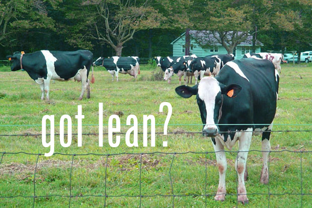 Lean Pull System Cows