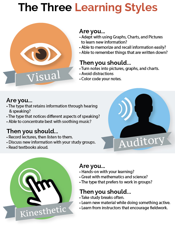 infographic-three-learning-styles